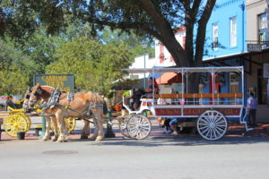 horse carriage savannah georgia