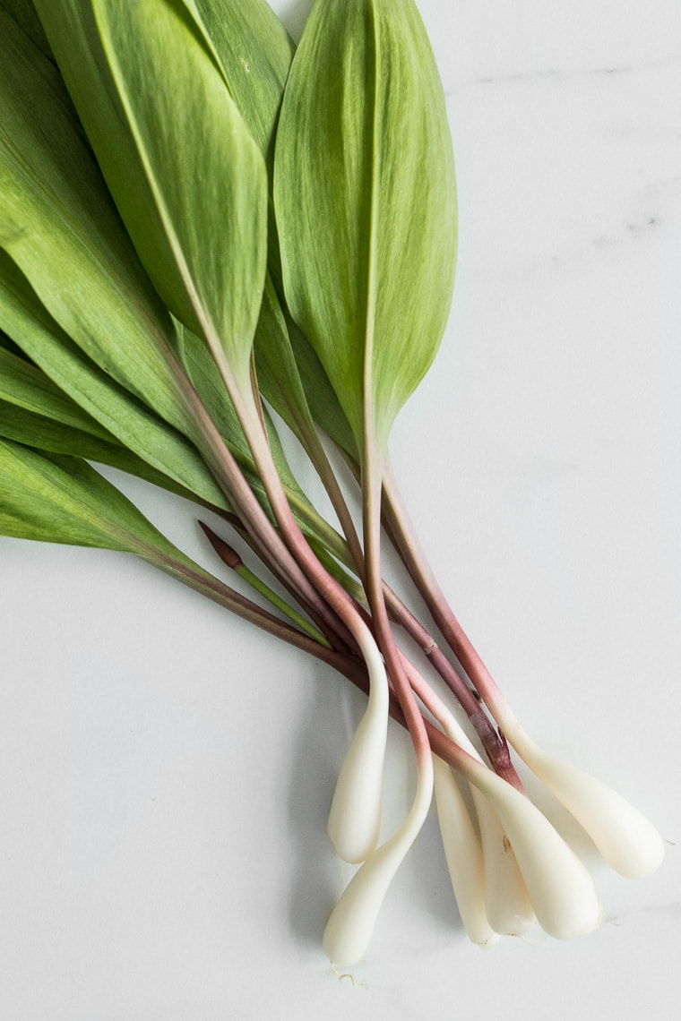 Spring Ramps on a Marble Counter