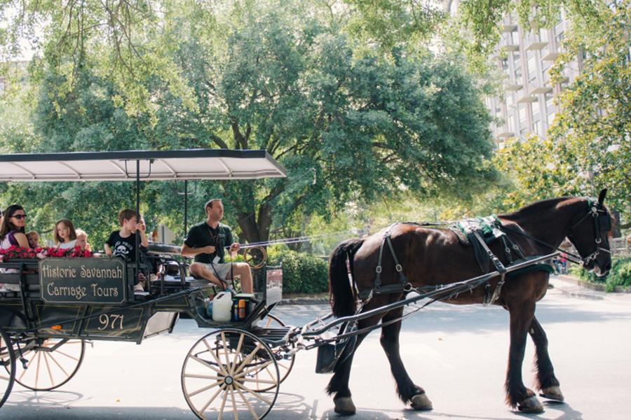 Historic Savannah Carriage Tours