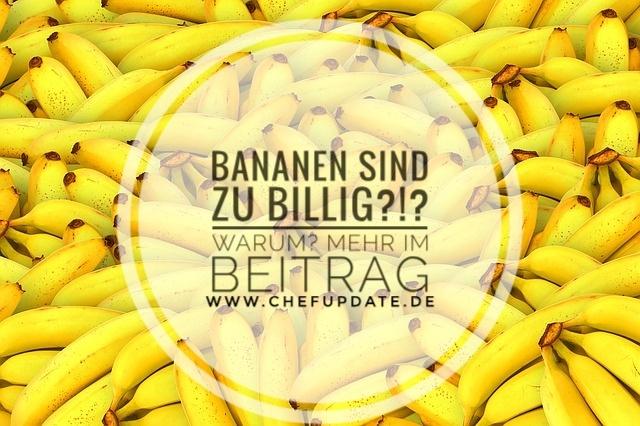 Bananen sind zu billig?!?! Warum? Mehr im Beitrag