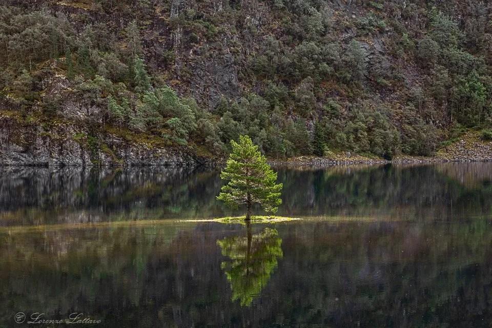 Costi e Consigli per un viaggio in Norvegia