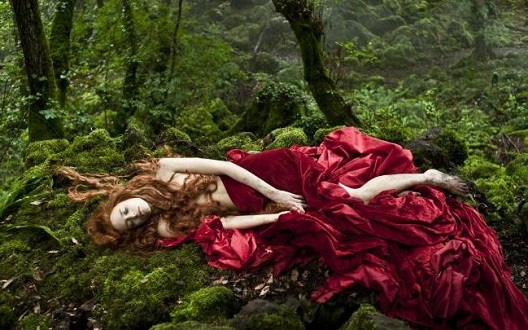 """Audience feedback for """"Tale Of Tales"""""""
