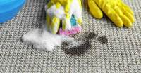 How to Remove Oil or Grease from a Carpet - Chelsea Cleaning