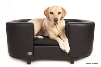 Best Dog Beds For Labradors | Labrador Dog Beds