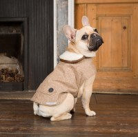 Best Dog Coats In The UK 2013