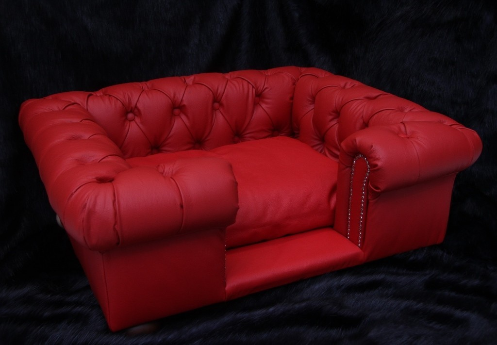 chesterfield sofa leather white de canto usado em curitiba real dog sofas | luxury beds