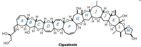 cigatoxin.png
