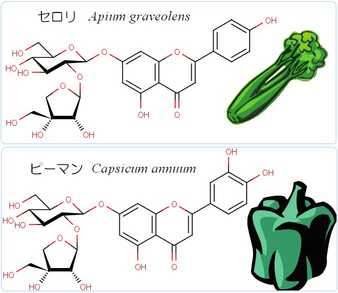 GREEN4apiose.png