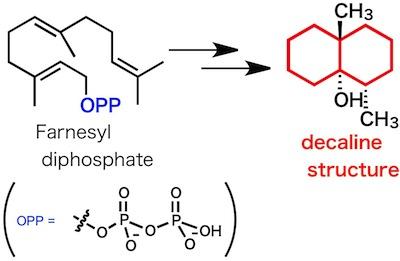 farnesyldiphosphate.jpg