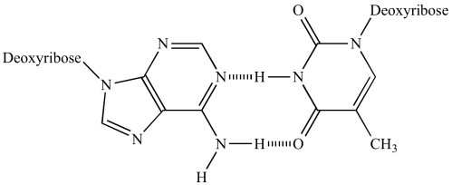 small resolution of adenine thymine