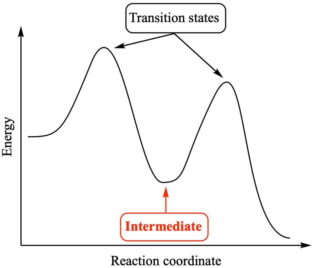 medium resolution of in an energy profile an intermediate appears at an energy saddle point whereas a transition state appears at an energy maximum
