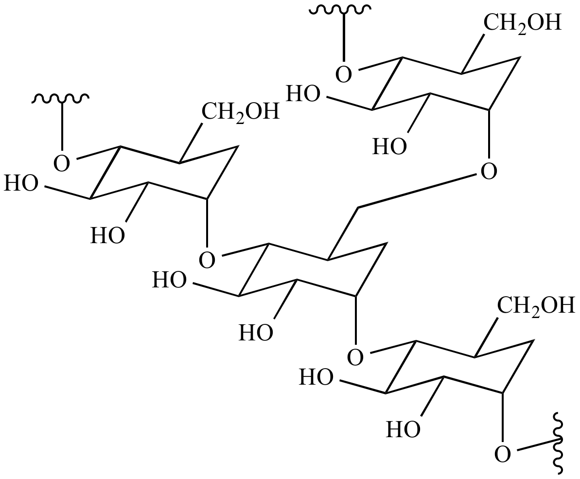 hight resolution of p monomer diagram