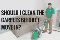 Best Way To Clean Pet Urine Out Of Carpet