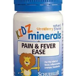 Martin & Pleasance Pain & Fever Ease 100 Tablets (Strawberry) – Kidz Minerals