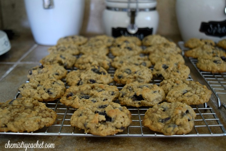 The best oatmeal raisin cookies you will ever makes! chemistrycachet.com