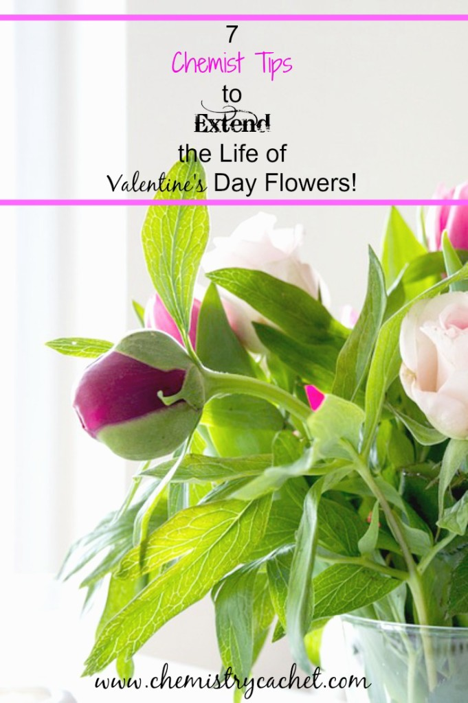 It's so sad when those pretty bouquets only last a few days! These are awesome chemist tips to extend the life of your fresh cut blooms! on chemistrycachet.com