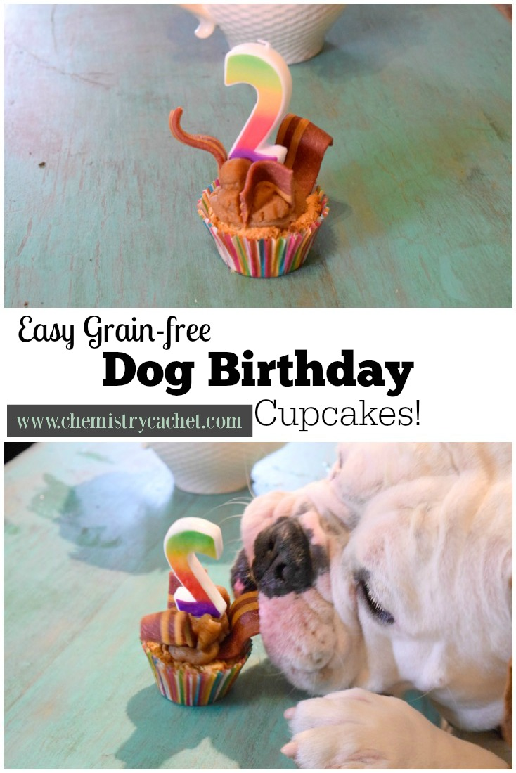 Easy Grain Free Dog Birthday Cupcakes These Are The Prefect Healthy