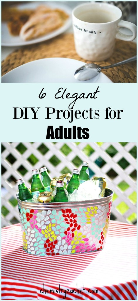 6 Elegant DIY Projects for Adults on chemistrycachet.com