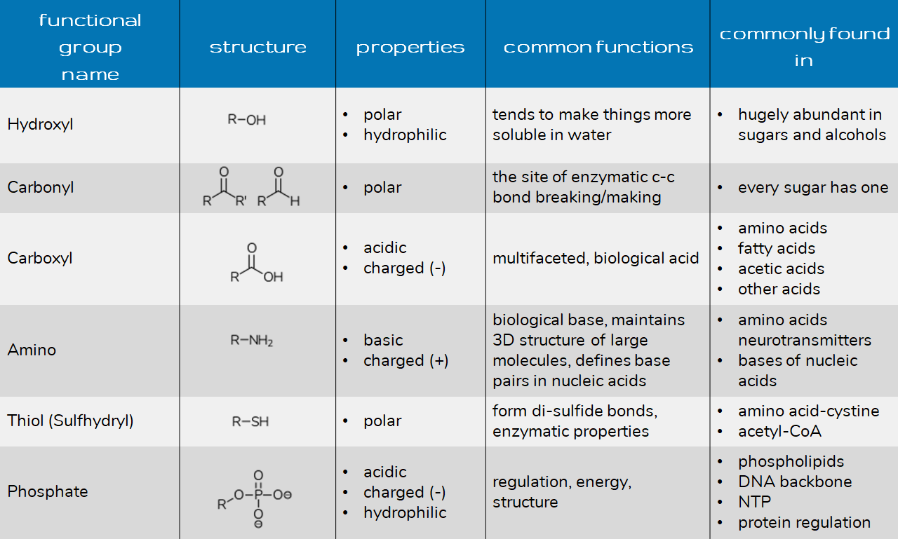 Functional Groups For Health And Bio Majors