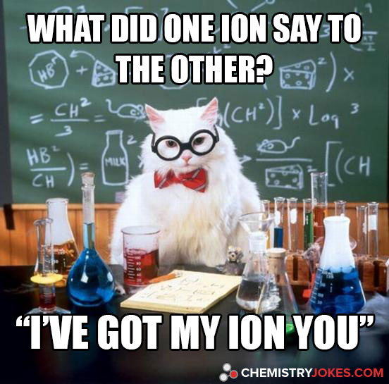 What Did One Ion Say To The Other  Chemistry Jokes