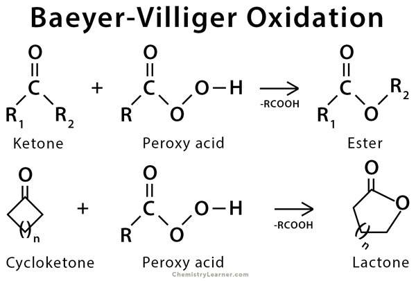 Baeyer-Villiger Oxidation: Definition, Example and Mechanism