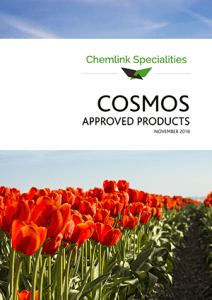 Cosmos approved brochure cover