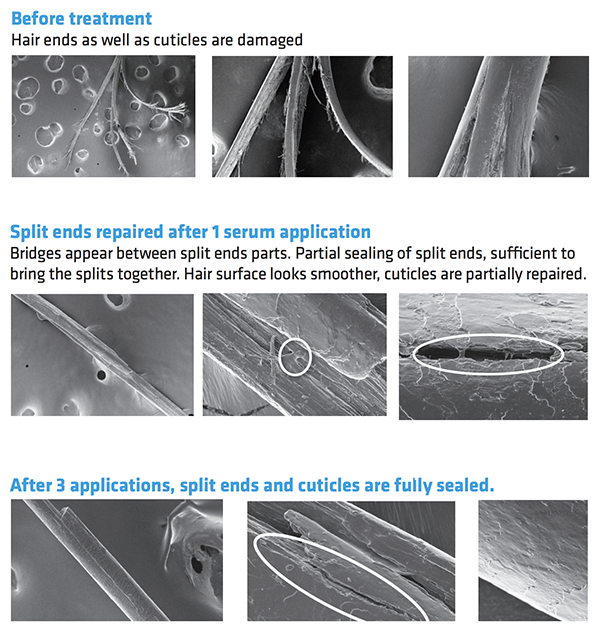 Images showing how Polycare Split Therapy works to repair split ends