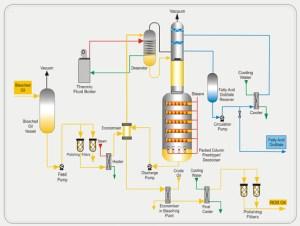 Edible Oil Refining Processes  Degumming  Neutralization