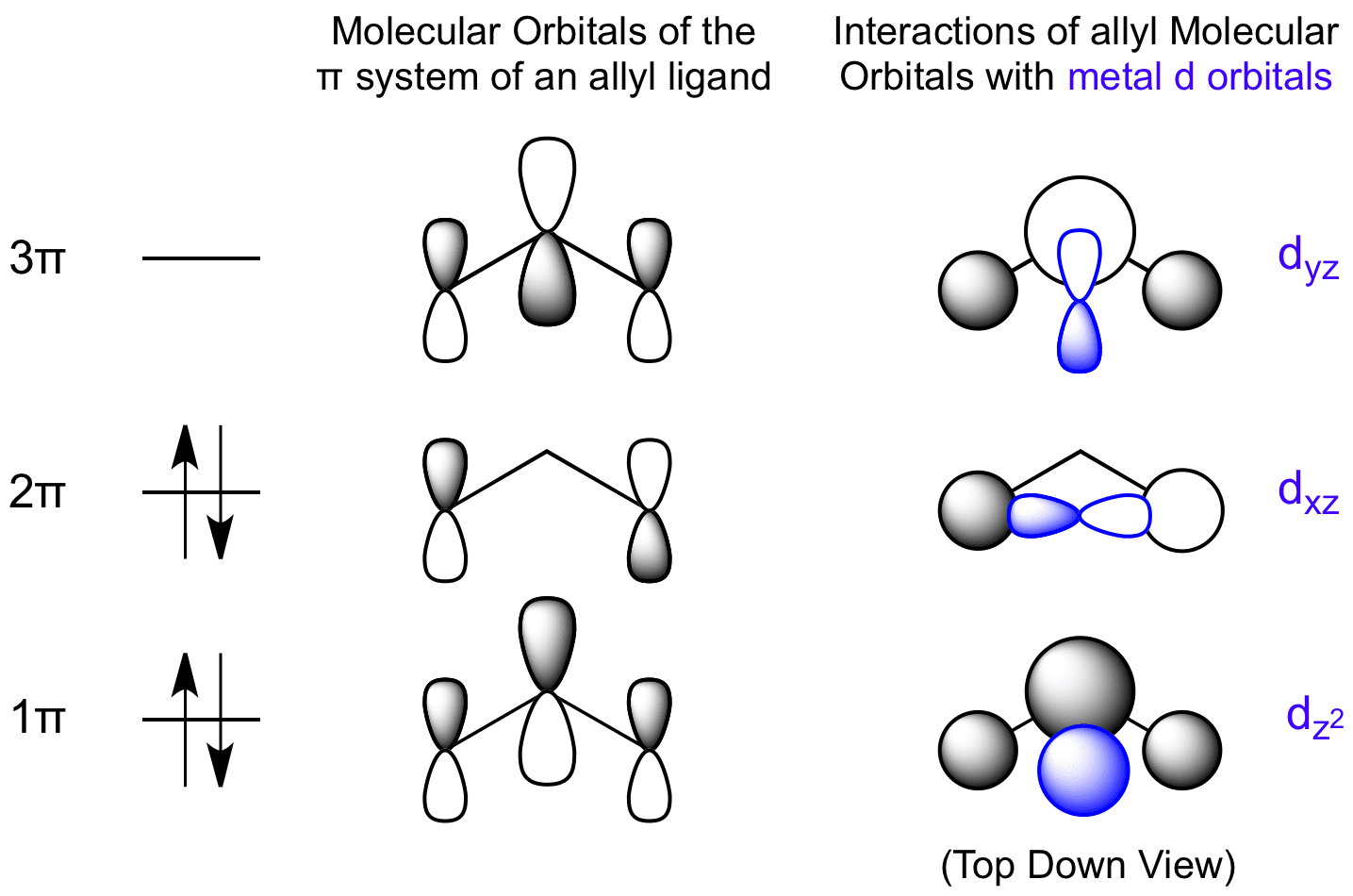 Molecular Orbital Diagram For Of2