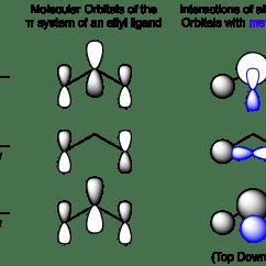 Molecular Orbital Energy Diagram For Co Mlk And Malcolm X Venn Interactions Between Allyl Orbitals Metal D