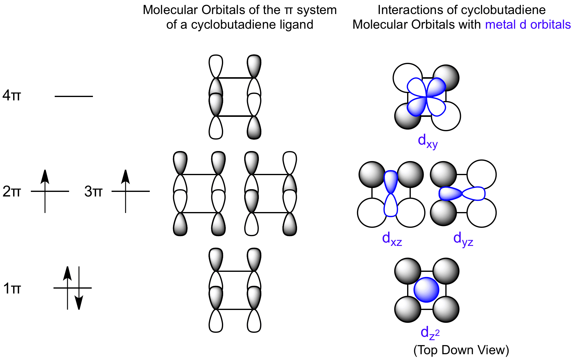 Interactions between Cyclobutadiene Molecular Orbitals and