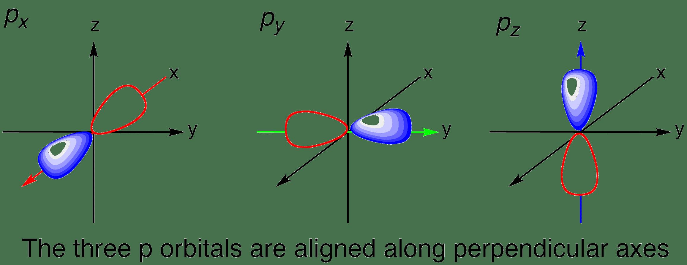 Shape Of P Orbitals In 3d