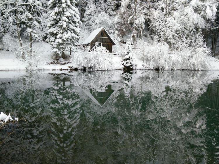 Naše divje jezero v snegu I