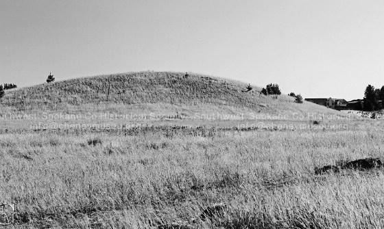 Photo by Carlene Hardt: Crunk's Hill