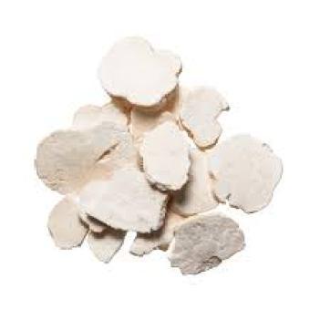 radix-trichosanthis-tian-hua-fen-%e5%a4%a9%e8%8a%b1%e7%b2%891
