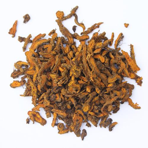 rhizoma-coptidis-huang-lian-%e9%bb%84%e8%bf%9e1