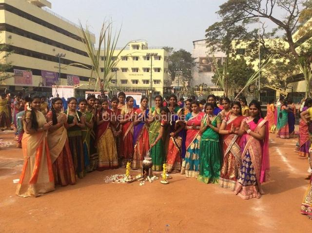 Pongal Celebration in Chennai