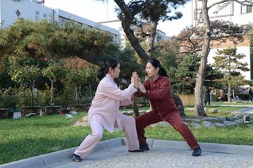 La maestra Chen Peiju pratica il tuishou