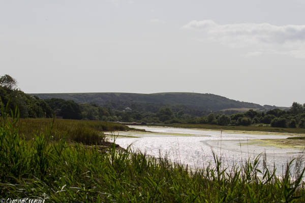 Tennyson Down from the river Yar at Freshwater