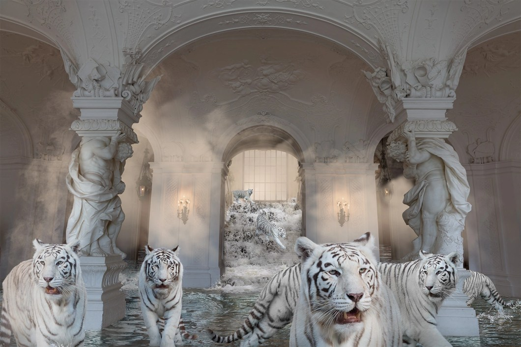 white tigers in palace