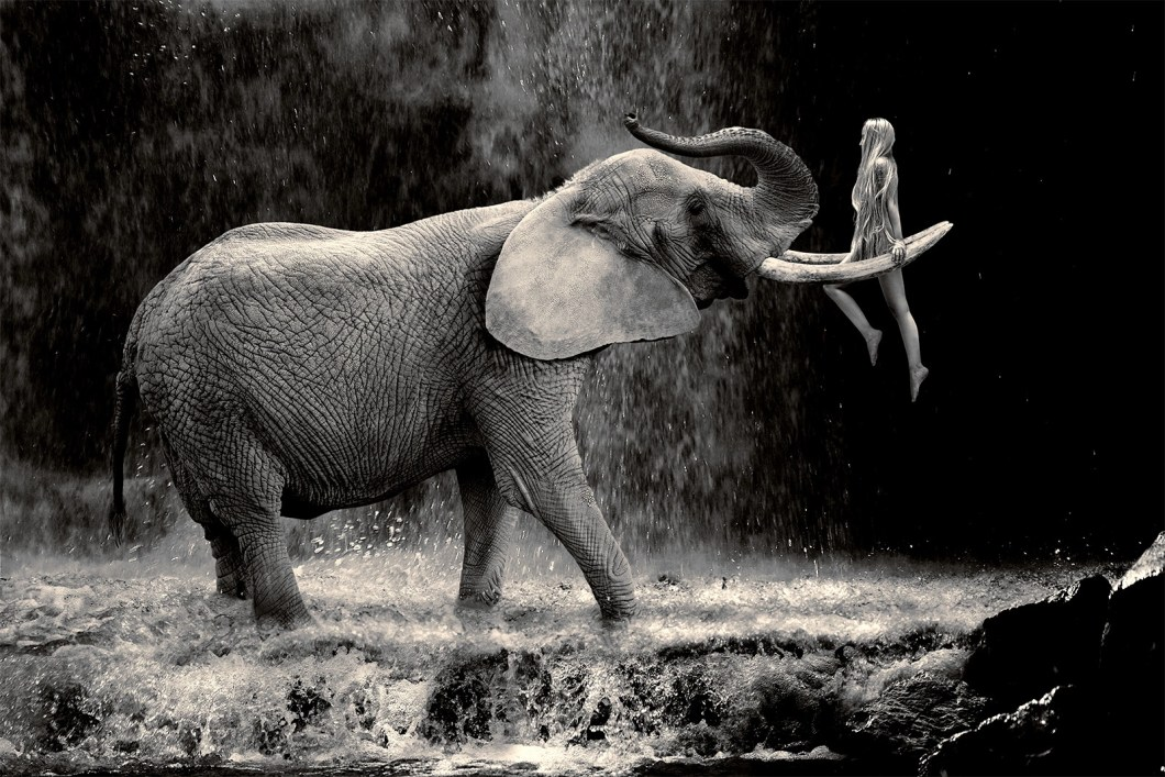 elephant with woman at a waterfal