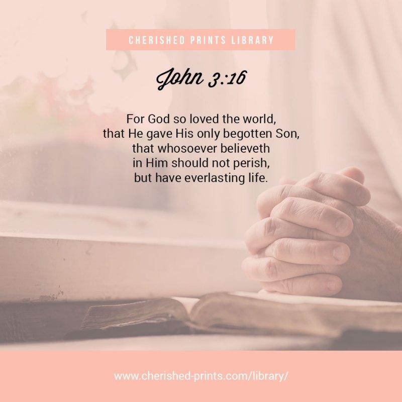 John3-16-Cherished-Prints-Library