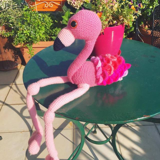Say hello to Flo the happy flamingo!   hellip
