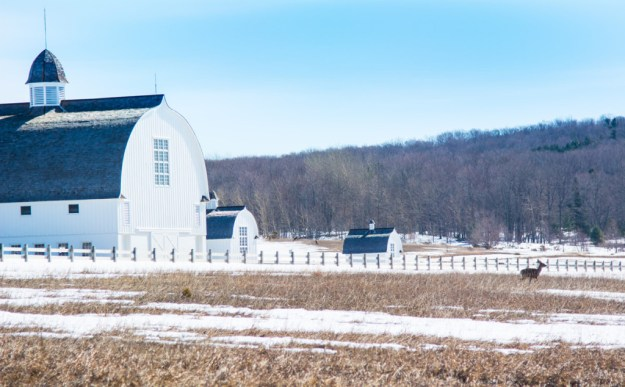 D. H . Day Barn