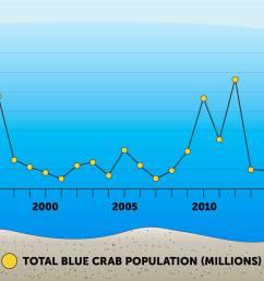 blue crabs [ 1800 x 842 Pixel ]