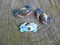 Lifelike plastic blue crab replicas. Nautical theme wall ...