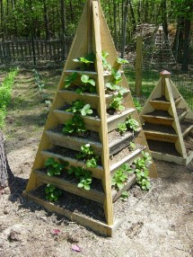 Build Pyramid Strawberry Planter. Diy Plans