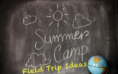 Fun Field Trip Ideas for Summer Camps in MD, DC, and VA