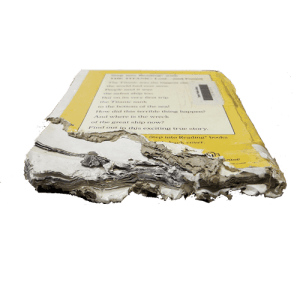A yellow book with a chewed and damaged cover and pages.