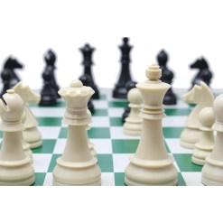 チェス駒 ジャーマンナイト・スタントン 8
